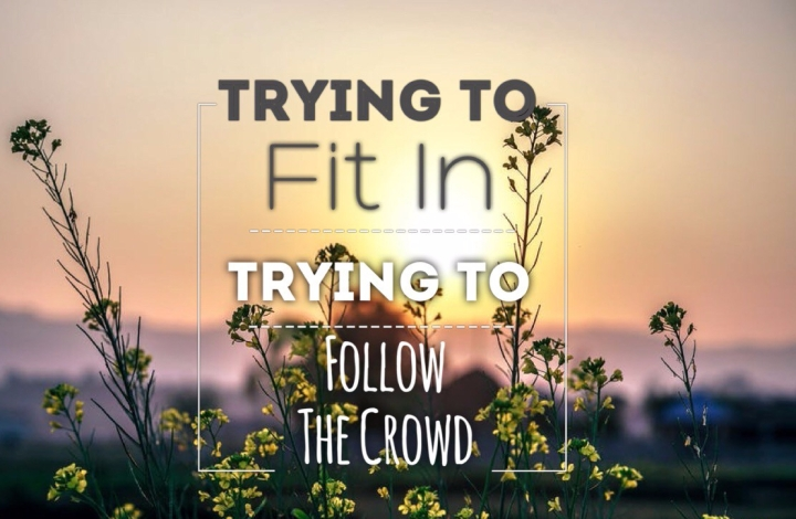 Stop Trying to Fit in Stop Following the Crowd (Video Included)